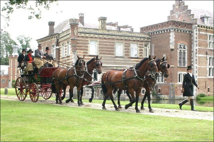 Et enfin le cheval qui a été sauvé par la reine d'Angleterre est de quelle race ?