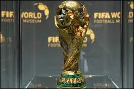 Parmi ces deux footballeurs, lequel a réalisé le meilleur parcours en Coupe du monde avec sa sélection, au 15 juillet 2021 ?