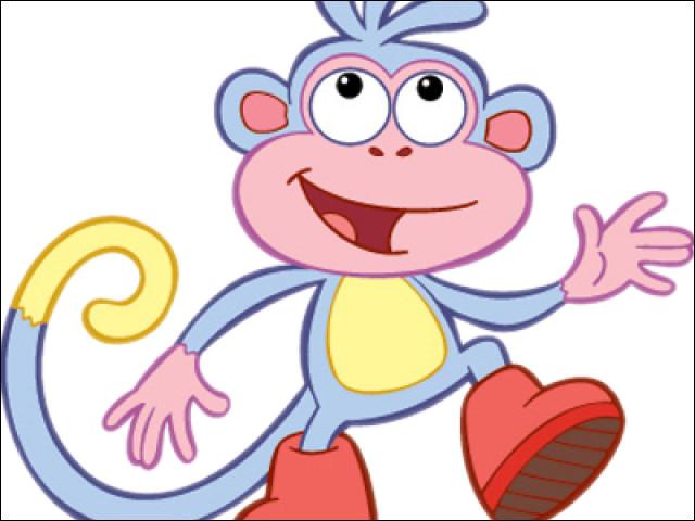 Comment s'appelle son singe de compagnie ?