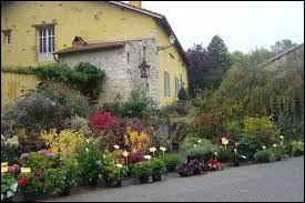 Je vous propose une balade parmi les fleurs, à Gélaucourt. Petit village du Grand-Est, récompensé au concours des Villes et Villages fleuris avec 4 fleurs, il se situe dans le département ...
