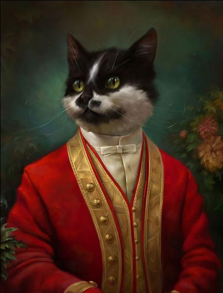 """Ce chat, venu tout droit du XIXe siècle, nous raconte sa vie trépidante dans ses """"Mémoires d'outre-tombe""""."""