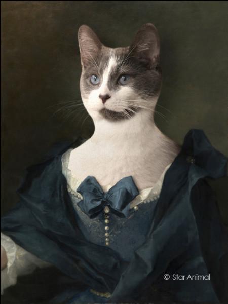 Cette chatte de l'aristocratie anglaise a vécu une passion fictive avec un garde-chasse.