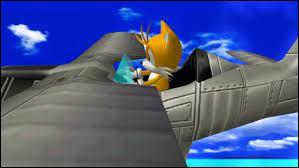Comment se nomment les niveaux où Tails pilote son avion ?