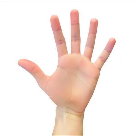 Qui a fait une main et a offert un penalty à la France ?