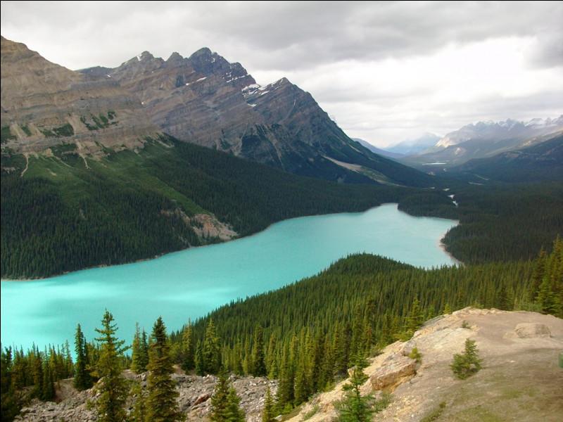 Dans quel pays pourrez-vous parcourir les grands espaces de l'Alberta ?