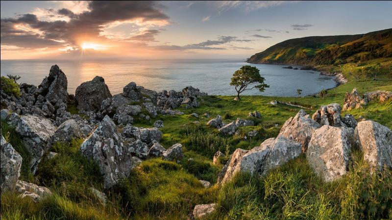 Voici le comté britannique d'Antrim et ses paysages spectaculaires de vallées et de falaises. Où pourrez-vous les photographier ?