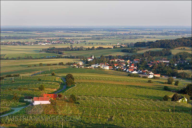 Région surtout viticole, où pourrez-vous visiter le Burgenland ?