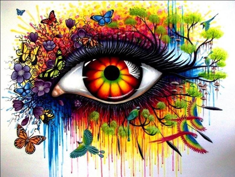 Quelle expression avec le mot «œil» signifie se tromper totalement ?