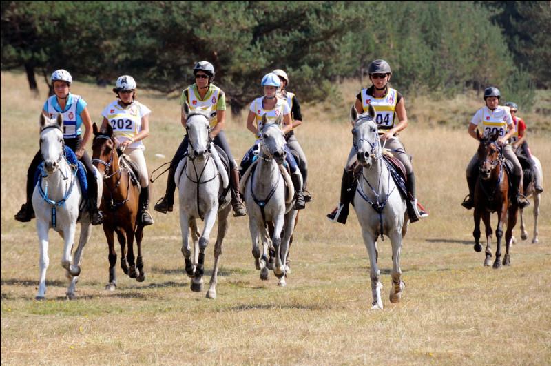 Vu l'équipement des cavaliers et comment sont montés les chevaux, vous pouvez supposer que cette discipline équestre est...
