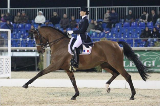 Pour les disciplines on termine facile. Quelle est cette discipline où les chevaux allemands sont les plus forts ?