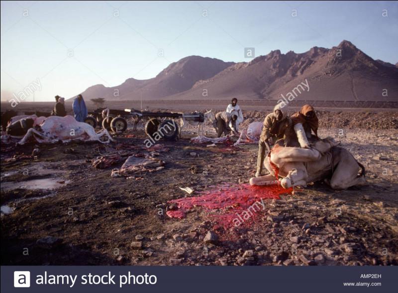 """""""Du sang dans le désert"""" est un long-métrage joué par Henry Fonda."""