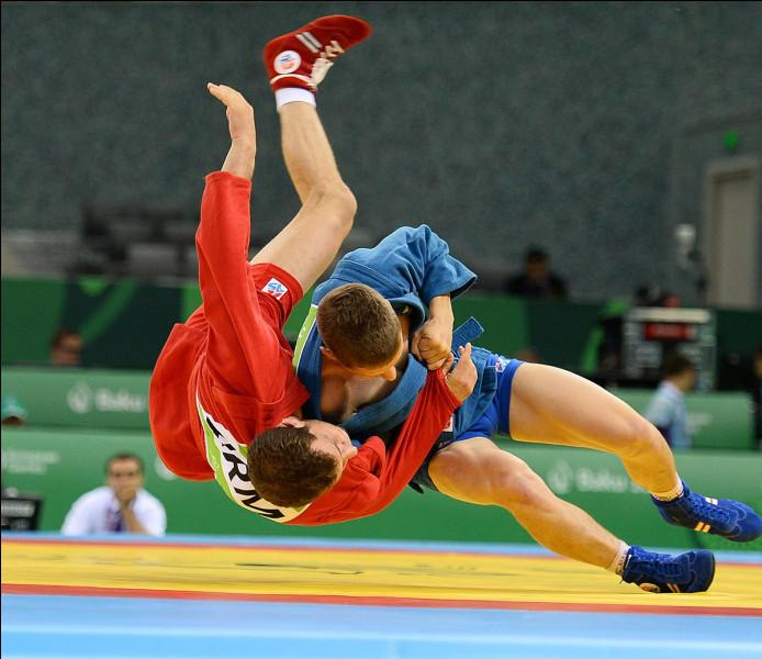Art martial et sport de combat créé en URSS dans les années 1930, mélangeant le judo, la boxe et la lutte :