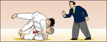 Pénalité au judo :