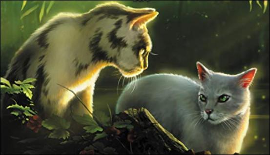 Le chat de gauche a noyé Étoile Solitaire, qui était par ailleurs son père ! Qui est ce traître ?
