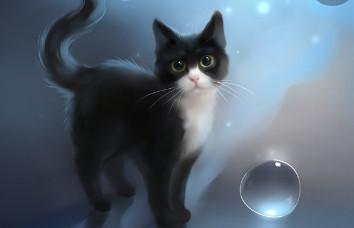 LGDC~Une image un chat (3)
