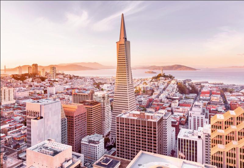 """Qui chantait """"Oui quand j'ai vu San Fransisco, ma ville est morte dans mon dos"""" ?"""