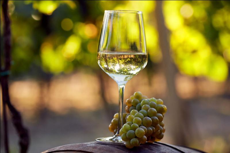 Quelle est la principale variété de cépage pour vin blancs, beaucoup produite et très appréciée en Valais