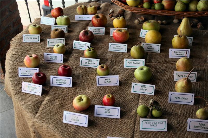 Combien de variétés de pommes sont cultivés à travers le monde ?