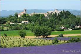 Voici une vue de Puygiron, avec ses champs de lavande en premier plan. Village d'Auvergne-Rhône-Alpes, il se trouve dans le département ...