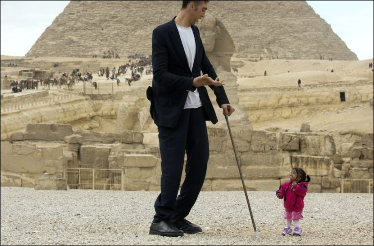 Quelle est la taille de l'homme le plus grand du monde ?