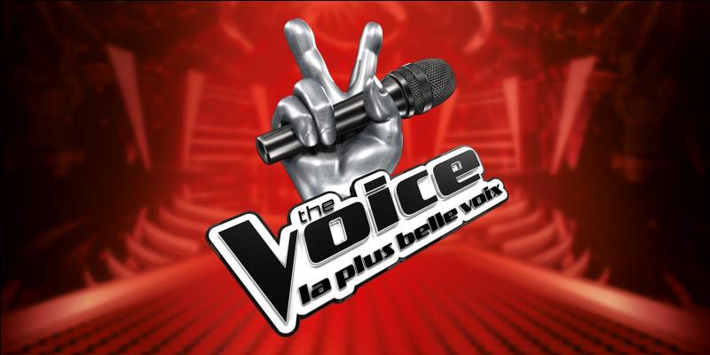 Voudrais-tu aller à The Voice ?
