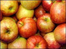 Chaque jour, Rémi mange 2 pommes. Combien en aura-t-il mangé au bout de 2 semaines ?