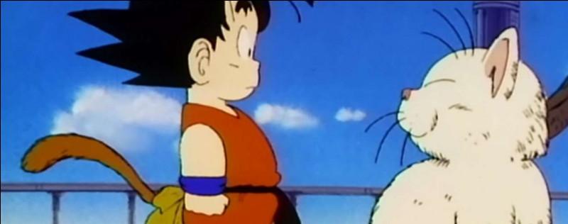 Quel effet Goku a-t-il ressenti quand il a bu l'Elixir Sacré en haut de la tour Karin ?