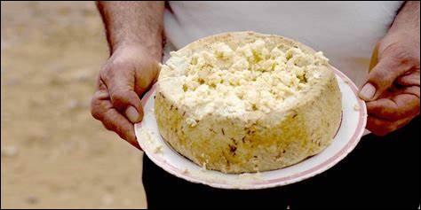 Le casu marzu est un fromage...