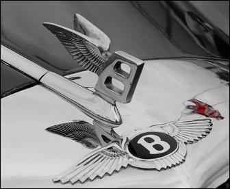 Cette lettre stylisée et ailée est le symbole de la marque ...