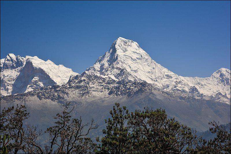 """Montagne : de ces trois grands alpinistes, lequel a été le premier à vaincre l'Anapurna, premier """"8000"""", accompagné de Maurice Herzog, en 1950 ?"""