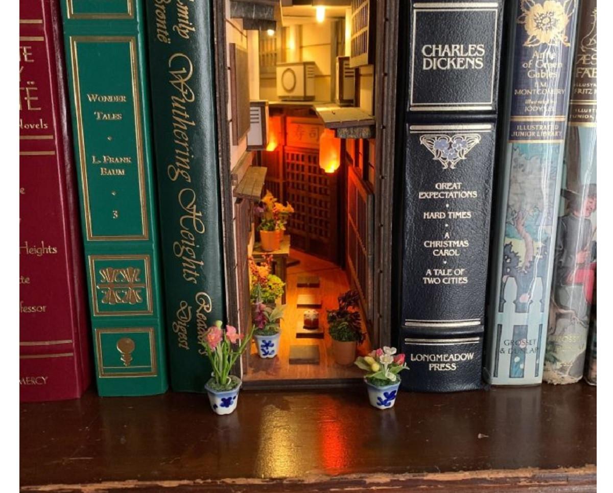 La petite bibliothèque - (10)