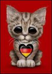"Comment dit-on ""chat"" en allemand ?"