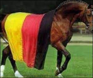 "Comment dit-on ""cheval"" en allemand ?"