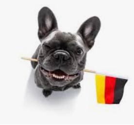Les animaux en allemand !