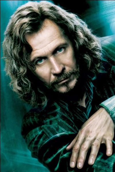 Qui a tué Sirius ?