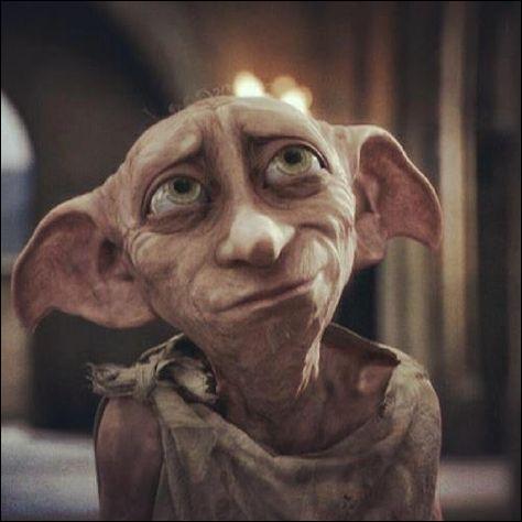 Qui a tué Dobby ?