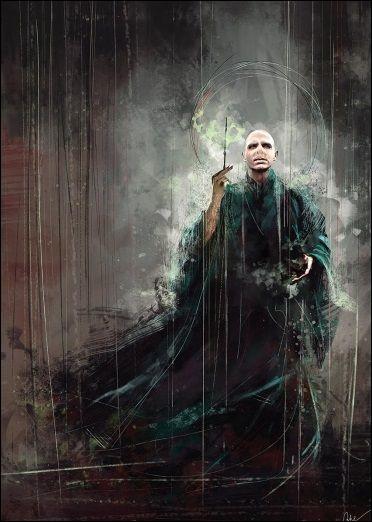 Qui a tué Voldemort ?