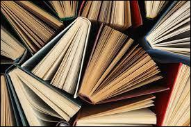 Selon toi, quel est l'endroit idéal pour une séance de lecture ?