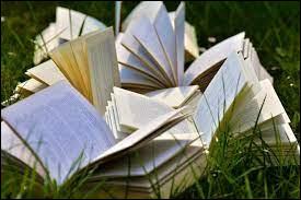 Comment choisis-tu tes livres ?