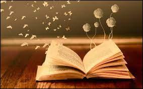 Que t'apporte une lecture ?