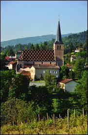 Nous sommes en Auvergne-Rhône-Alpes, à Saint-André-d'Apchon. Commune de l'agglomération Roannaise, elle se situe dans le département ...