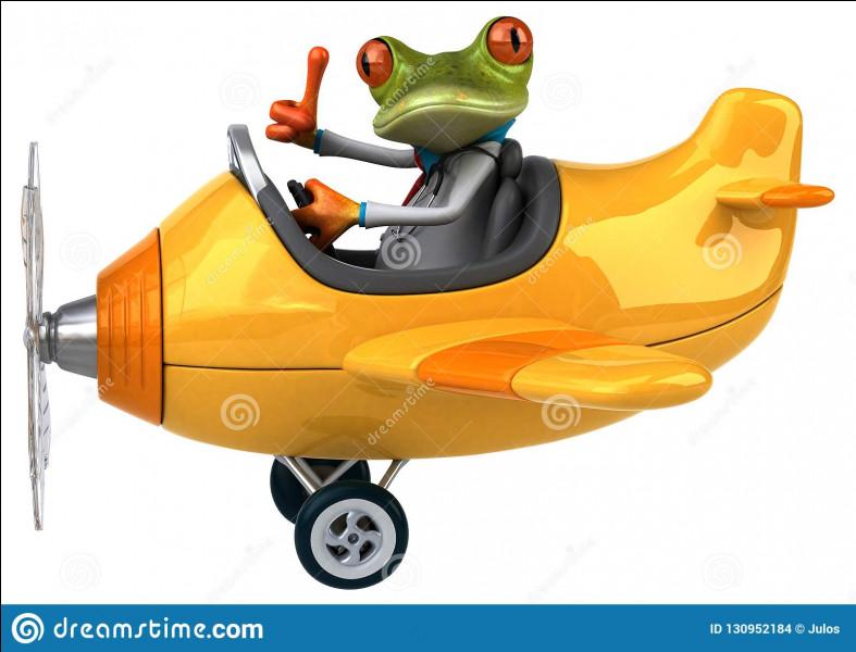 Combien de temps faut-il à 10 grenouilles pour attraper 10 mouches, sachant que 5 grenouilles attrapent 5 mouches en 5 minutes ?