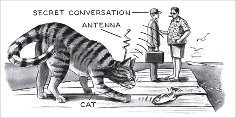 C'était une opération menée par la CIA durant la guerre froide : un chat espion qui contenait toutes sortes de machines pour écouter les plans des ennemis.