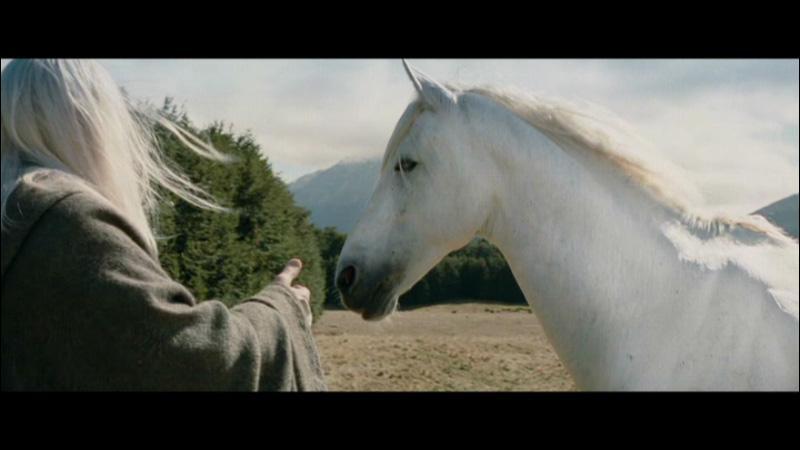 Quel est le nom du cheval de Gandalf ?