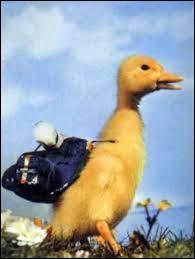"""Rajoutez """"-in"""" à la place du """"e"""" au nom de ce petit canard et votre planète sera simple à trouver !"""