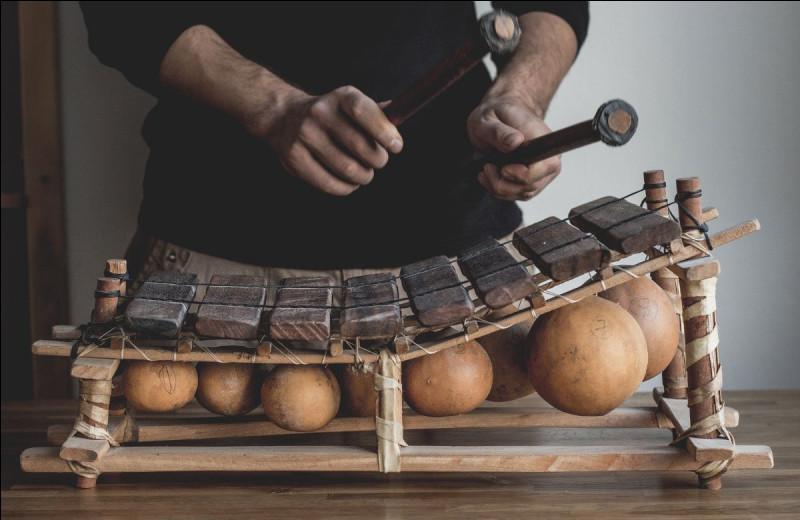 Quel instrument de musique africain apercevons-nous ici ?
