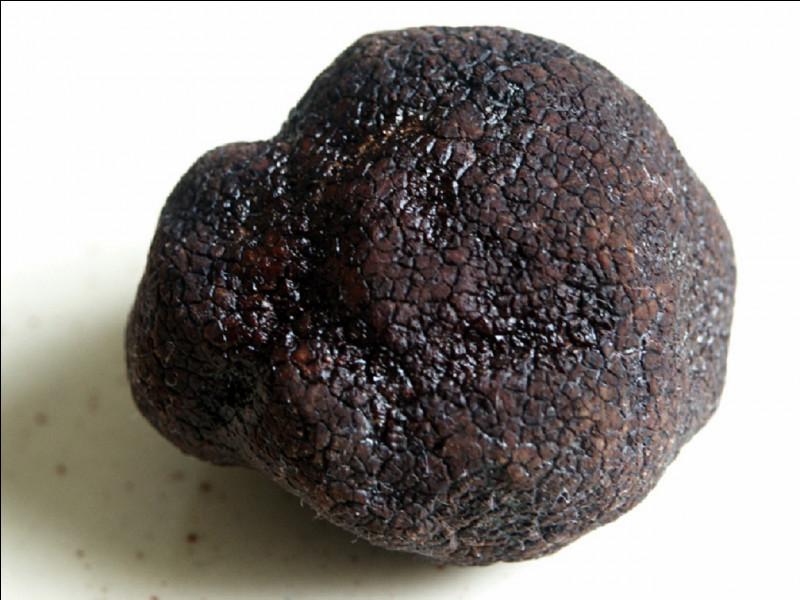 Dans quelle région la truffe noire est également nommée diamant noir ?