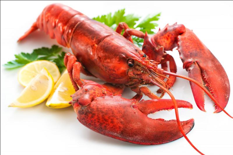 Quel est ce crustacé muni de pinces imposantes dont la chair très gustative est appréciée ?