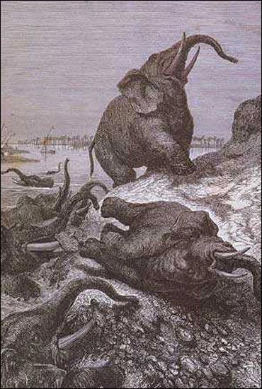 """Qui a interprété le titre """"Le Cimetière des éléphants"""" ?"""
