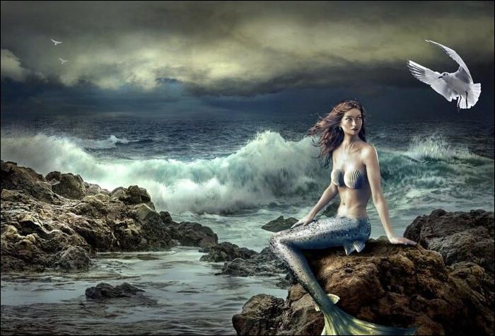 """On les surnomme """"vaches marines"""" car ils broutent souvent les herbiers marins mais on les appelle aussi sirènes (à vrai dire, celles de notre imaginaire sont beaucoup plus gracieuses)."""